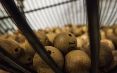 Gravamen especial sobre premios de loterías y apuestas