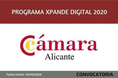 Programa Xpande Digital