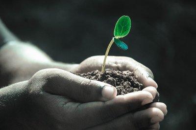 Compromiso con la sostenibilidad