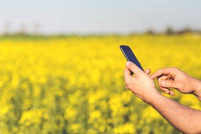 La Conselleria de Agricultura y Transición Ecológica lanza ViRAMos, un buscador de recursos agroalimentarios y medioambientales